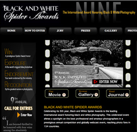 BLACK AND WHITE SPIDER AWARDS
