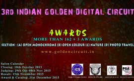 3rd Indian Golden Digital Circuit