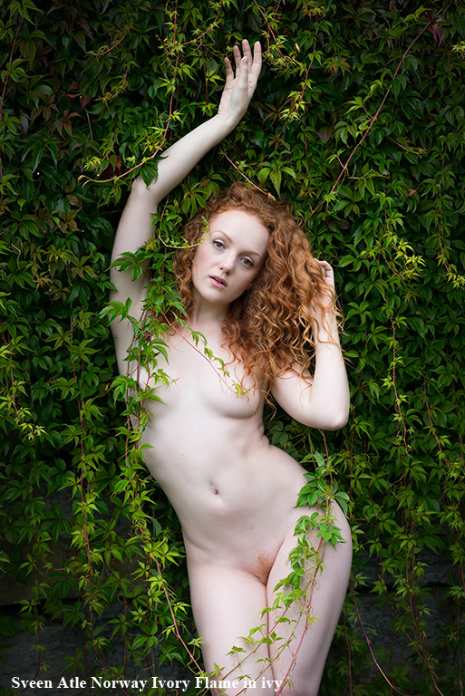 _sveen_atle_ivory_flame_in_ivy